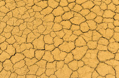 Dry crack earth texture Stock Image