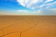 Dry crack field Royalty Free Stock Photo