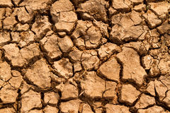 Dry and crack soil Stock Photography