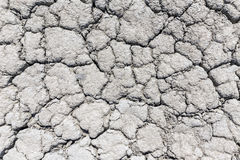 Dry crack soil Royalty Free Stock Image
