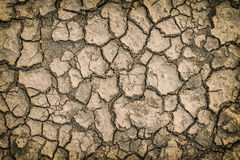 Dry crack soil background Stock Photo