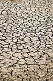Dry crack soil Stock Image