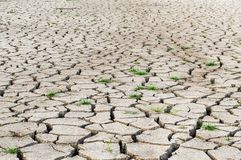 Dry crack soil. In country thailand royalty free stock image