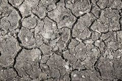 Dry crack soil on dry season Royalty Free Stock Photography