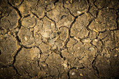 Dry crack soil on dry season, Global worming effect Stock Photography