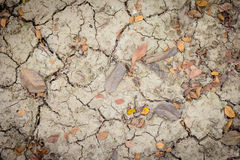 Dry and crack soil with leaves. Dry and crack soil with  leaves Stock Image