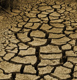 Dry cracked australian dirt during a drought Stock Image