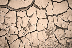 Dry cracked clay background texture Royalty Free Stock Photo