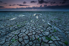 Dry cracked coast at North sea Stock Photo