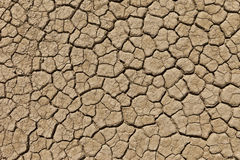 Dry cracked desert earth Stock Photo