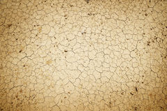 Dry cracked dirt Stock Image
