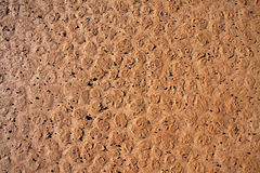 Dry cracked dirt surface Stock Photo