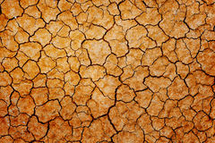 Dry cracked earth. Closeup background royalty free stock images