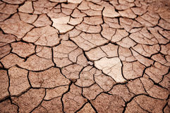Dry cracked earth royalty free stock photography