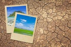 Dry cracked earth Stock Photo