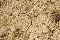 Dry Cracked Earth. Very dry, cracked earth with rocks and various dried plants stock photo
