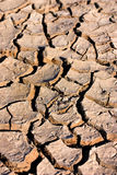 Dry cracked earth. Dried out, cracked African soil during drought period - shallow depth of field, focus near front Royalty Free Stock Images