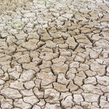 Dry cracked earth. As textured background Royalty Free Stock Photos