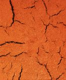 Dry Cracked Earth Background Royalty Free Stock Photography