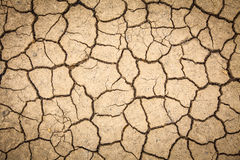 Dry cracked of earth Stock Photography