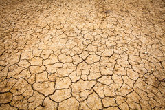 Dry cracked of earth Royalty Free Stock Photos