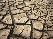 Free Dry Cracked Earth Background Royalty Free Stock Photos - 69867048