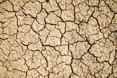Dry cracked earth background Stock Photo