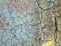 Dry cracked earth background Stock Images