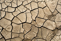 Dry cracked earth background, clay desert texture. Stock Images