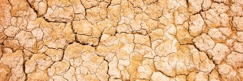 Dry cracked earth background, desert texture Stock Images