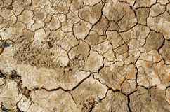 Dry and cracked earth background Stock Images