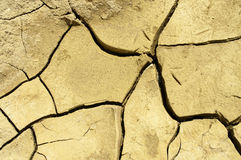 Dry cracked earth background Royalty Free Stock Photos