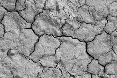 Dry cracked earth background. Cracked earth texture Royalty Free Stock Photos