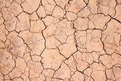 Dry cracked earth background texture Royalty Free Stock Photography