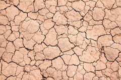 Dry cracked earth background texture Stock Image