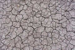 Dry cracked earth backgrounds/textures Royalty Free Stock Photos