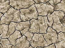 Dry and cracked earth. Stock Photography