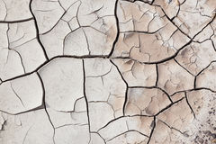 Dry Cracked Earth Stock Image