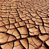 Dry cracked earth - Desert. Dry and cracked earth in the Namib Desert in Namibia Royalty Free Stock Photo