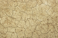 Dry cracked earth - Desert Stock Photos