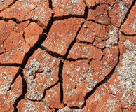 Dry cracked earth - Deserted - Global warming Royalty Free Stock Images