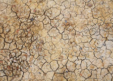 Dry cracked earth or dirt texture. Dry cracked earth or dirt for texture pattern background, Water crisis in Thailand stock photo