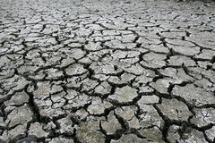 Dry cracked earth. Cracked and dried mud texture stock photography