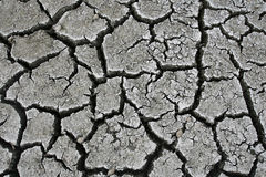 Dry cracked earth. Cracked and dried mud texture Royalty Free Stock Photography