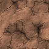 Dry cracked earth drought Royalty Free Stock Image