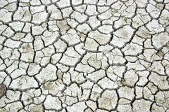 Dry cracked earth During Drought. Stock Images