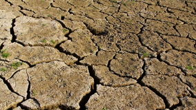 Dry cracked earth during drought stock video footage