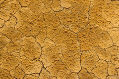 Dry cracked earth in drought Stock Photos