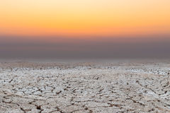 Dry cracked earth ,drought Royalty Free Stock Image