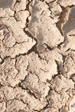 Dry cracked earth. Royalty Free Stock Photo